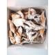 Polish Chrusciki / Angel Wings Pastry 8oz
