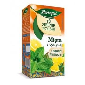 Herbapol Mint with Lemon Tea / Mieta z Cytryna 20-bag 30g (W)