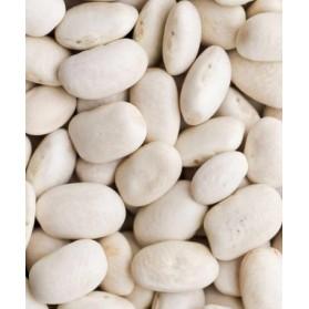 Fasola Biala White Beans 1lb 454g